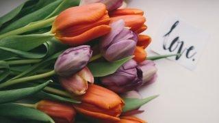 愛の花 こころの調律